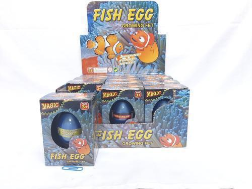 Growing Fish Egg