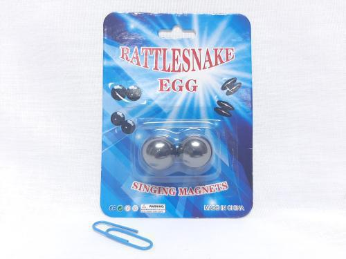 Rattle Snake Egg Magnets