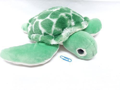 products/turtle_bigger.jpg